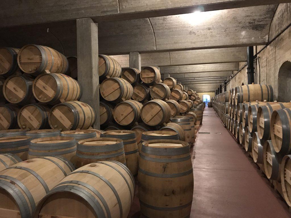 Heel veel vino